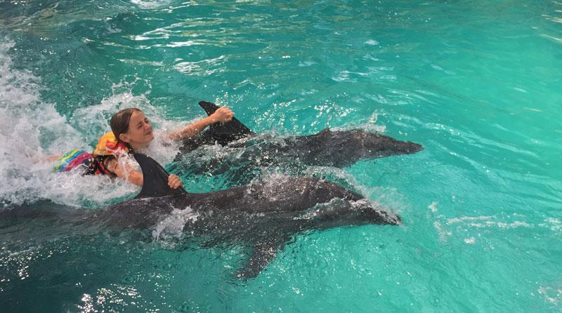 vicky-dolphins
